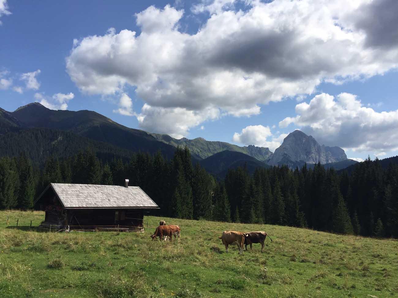 Val Visdende Dolomiti