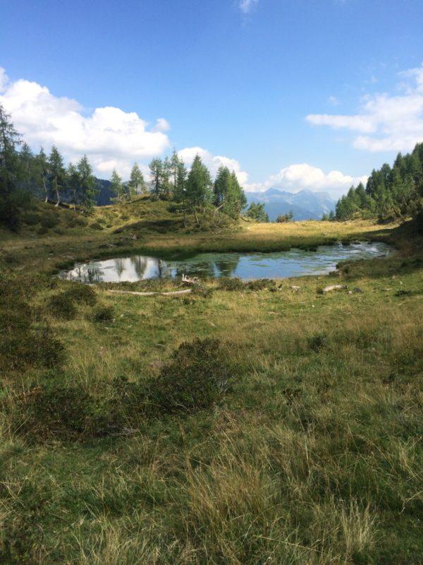 Casera Razzo laghetto
